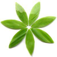 Large Petals: MG19 Green Tea