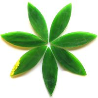 Large Petals: MG23 Spanish Moss
